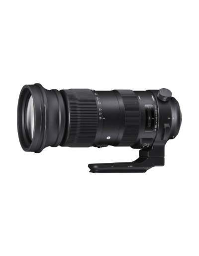 Sigma 60-600mm f/4.5-6.3 DG OS Sport Lens for Canon